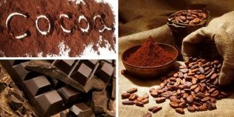 Cacao: cibo degli Dei