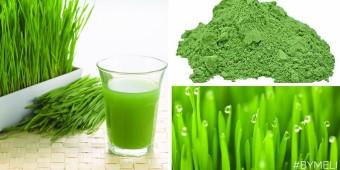 Energia verde e detossificazione – 8 motivi per consumare erba di grano ogni giorno